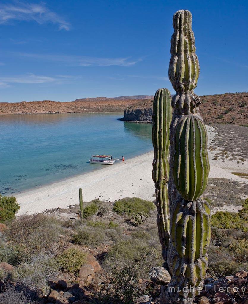Kayaking Adventure in Baja Mexico